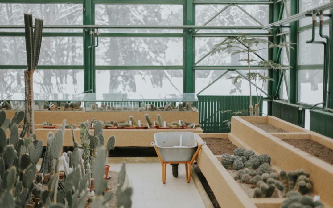 Ideas para dar vida a tu terraza o jardín, según Lumon España.